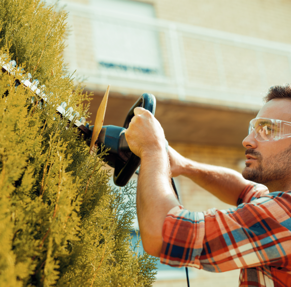 Landscaping design and installation in Mesa, AZ