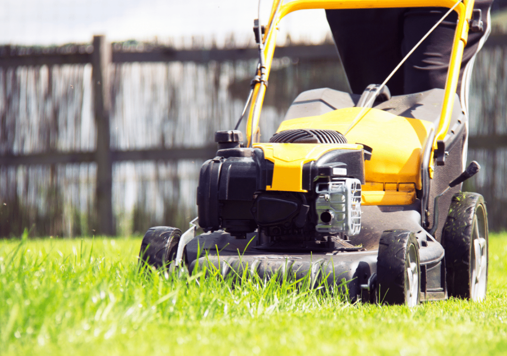 Commercial Landscaping services in Mesa, AZ